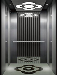 Fixed Competitive Price 6 Person Passenger Elevator Hot Sales -