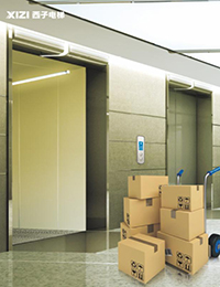Manufacturing Companies for Cheap Residential Lift Elevator -