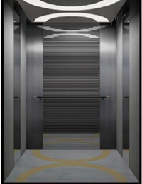 Factory Price Residential Elevators -